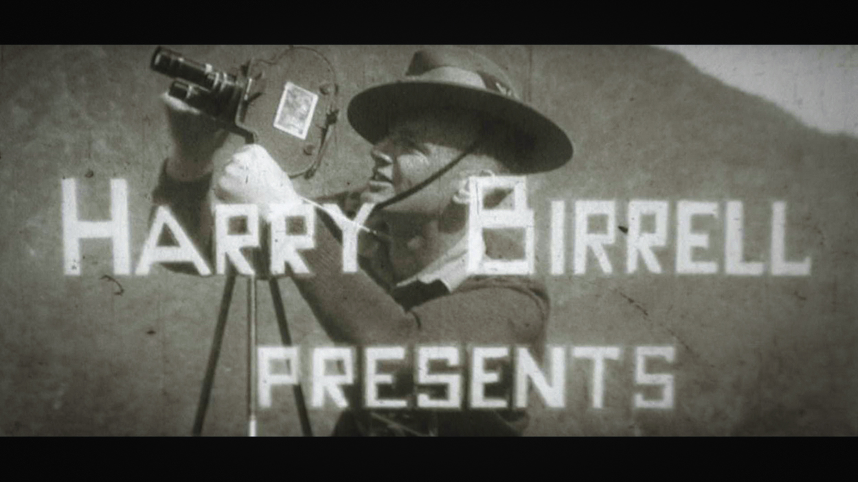 HARRY BIRRELL PRESENTS:  A STUNNING NEW COLLECTION OF WW2 CLIPS